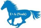 Nouvel Ordre écologique,l'Animal et l'Homme dans la culture européenne...